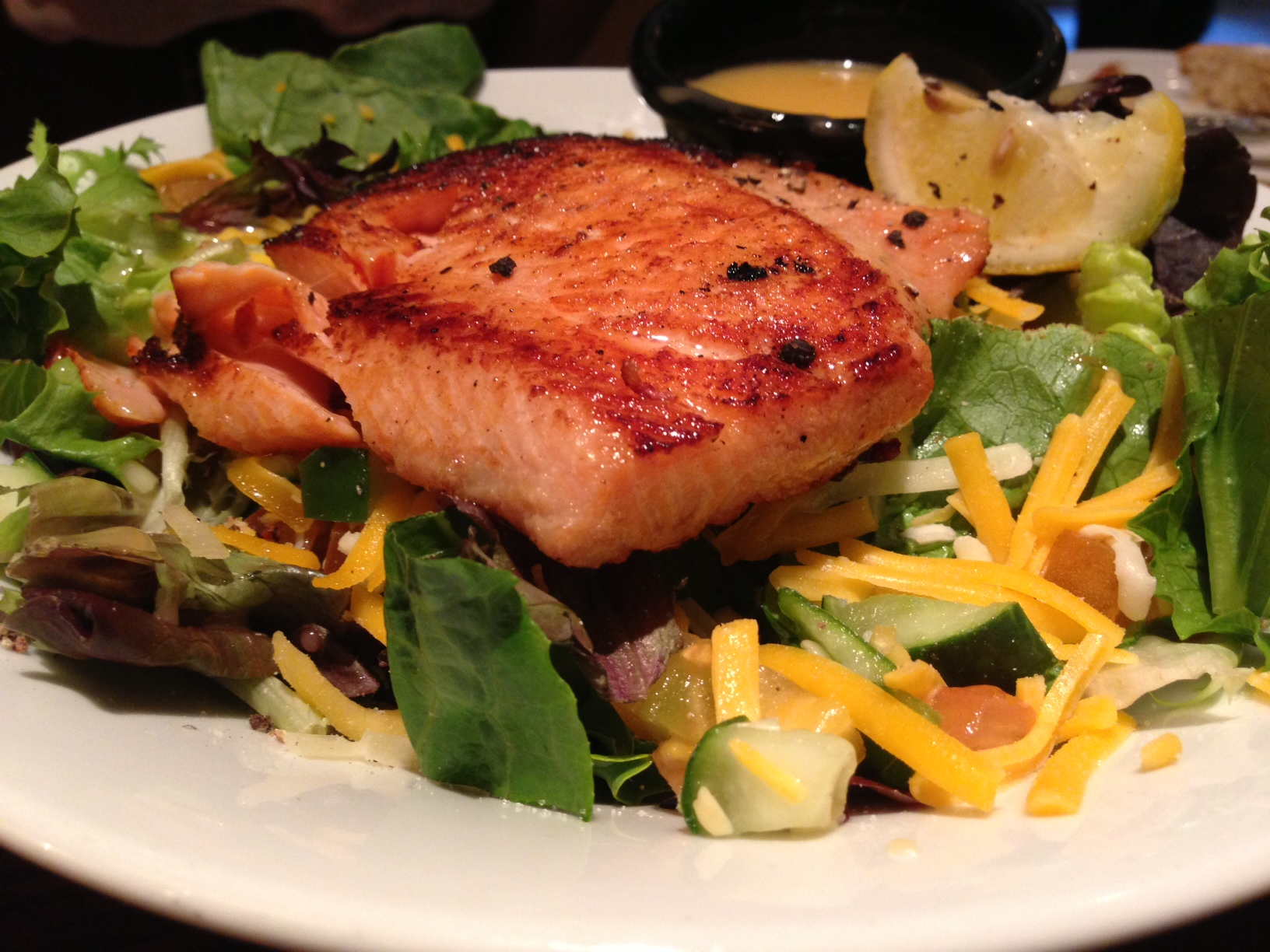 Grilled salmon over a bed of salad